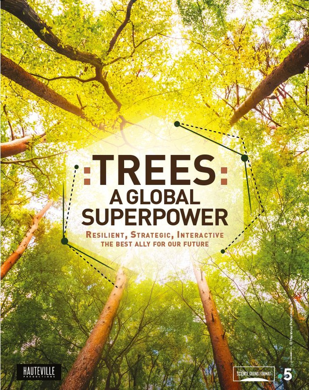 TREES: A GLOBAL SUPERPOWER