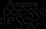 Angers pousse le son